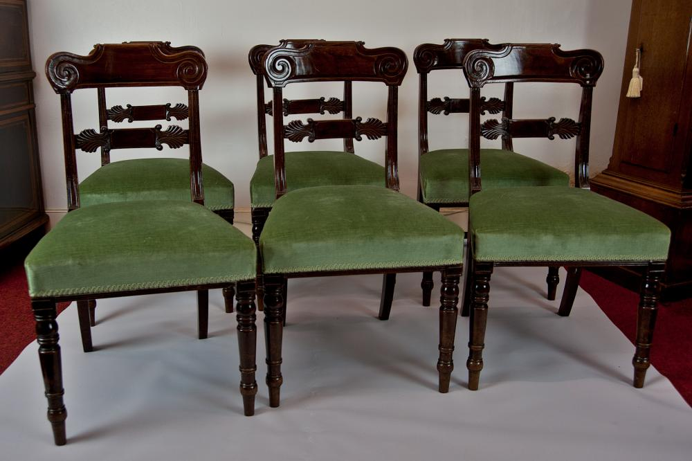 Set Of 6 William Iv Mahogany Dining Chairs Antique Furniture